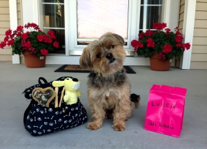 Cali's first day of school! Hehe!