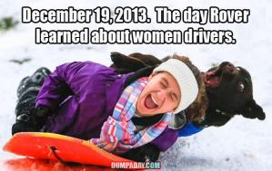 even-the-dog-hates-women-drivers