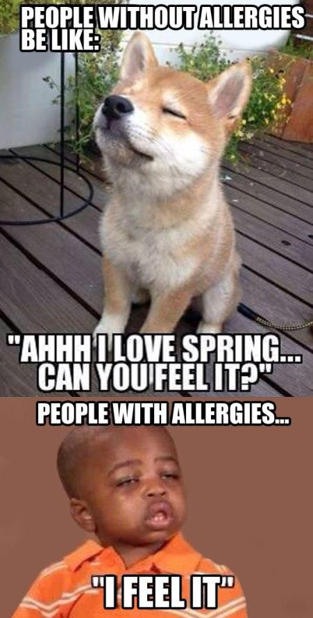 funny-people-allergies-spring-sick-kid